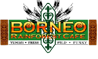 borneo-rainforest